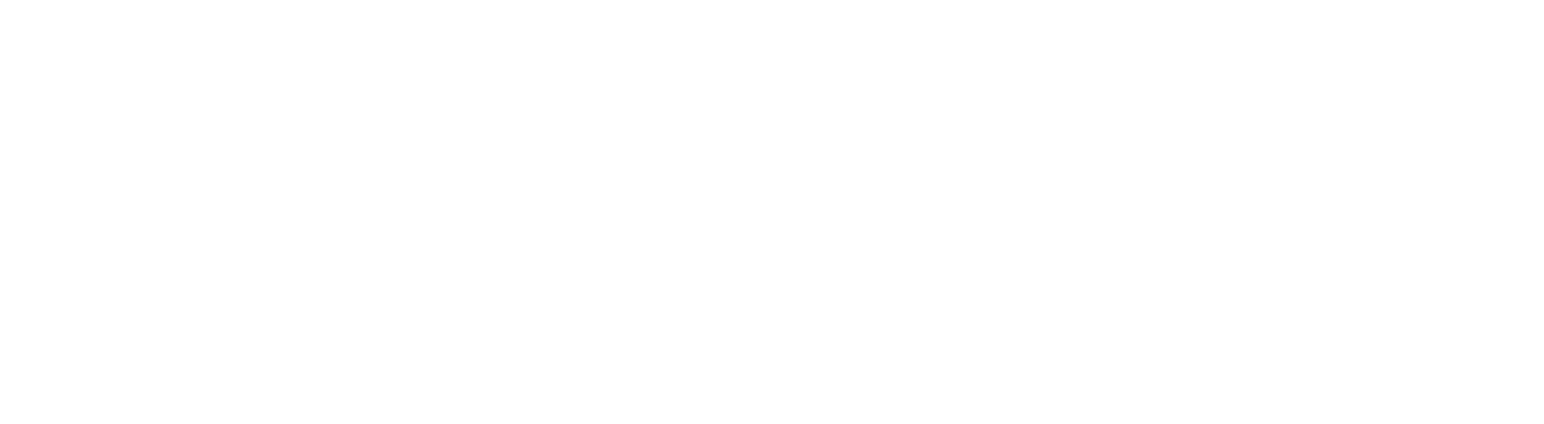 USARISK_Logo-white.png